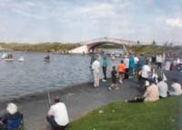 day_at_the_lake
