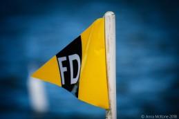 fwddf (8 of 40)